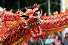 Dragon-Nouvel-An-chinois